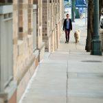 Mascotas en las comunidades